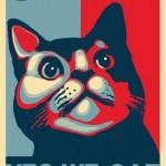 yes we cat1_n
