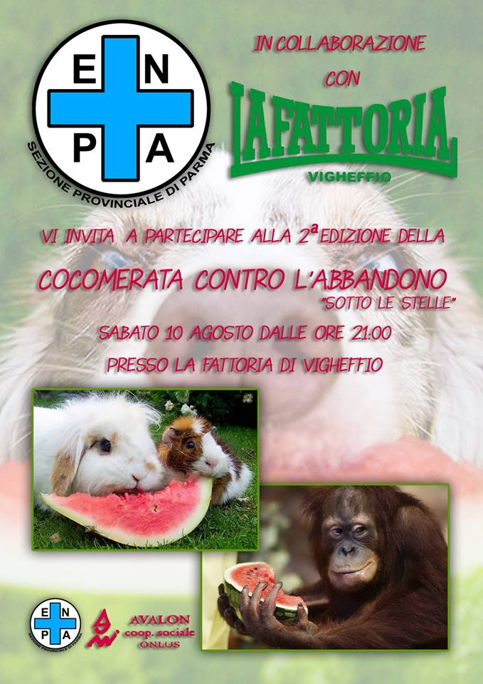 cocomerata2013