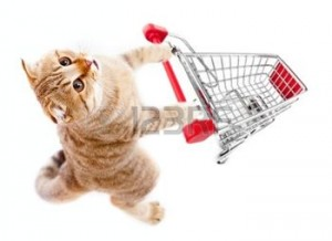 10548556-cat-with-shopping-cart-top-view-isolated-on-white