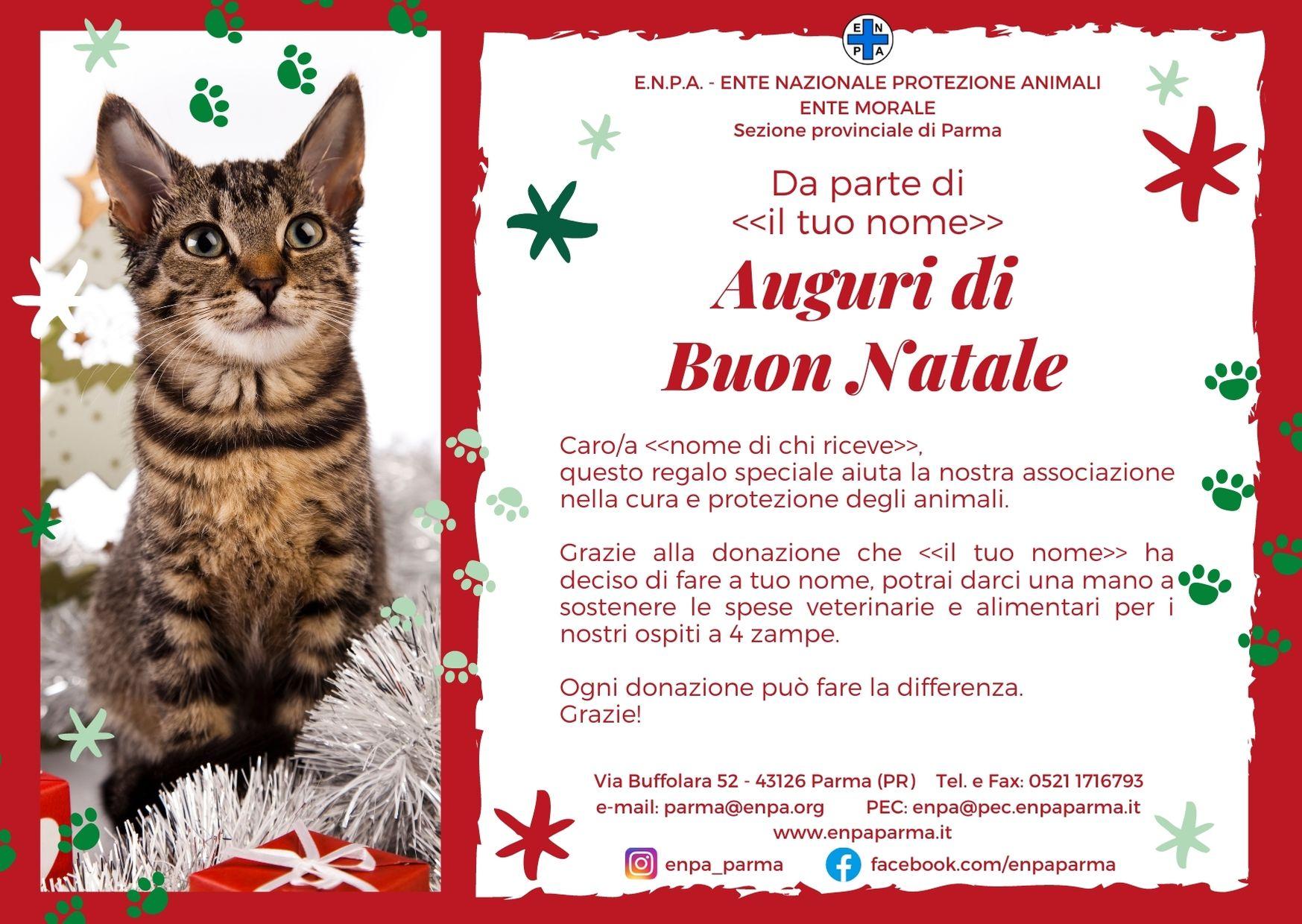 Natale Con ENPA (gatto - 5€)