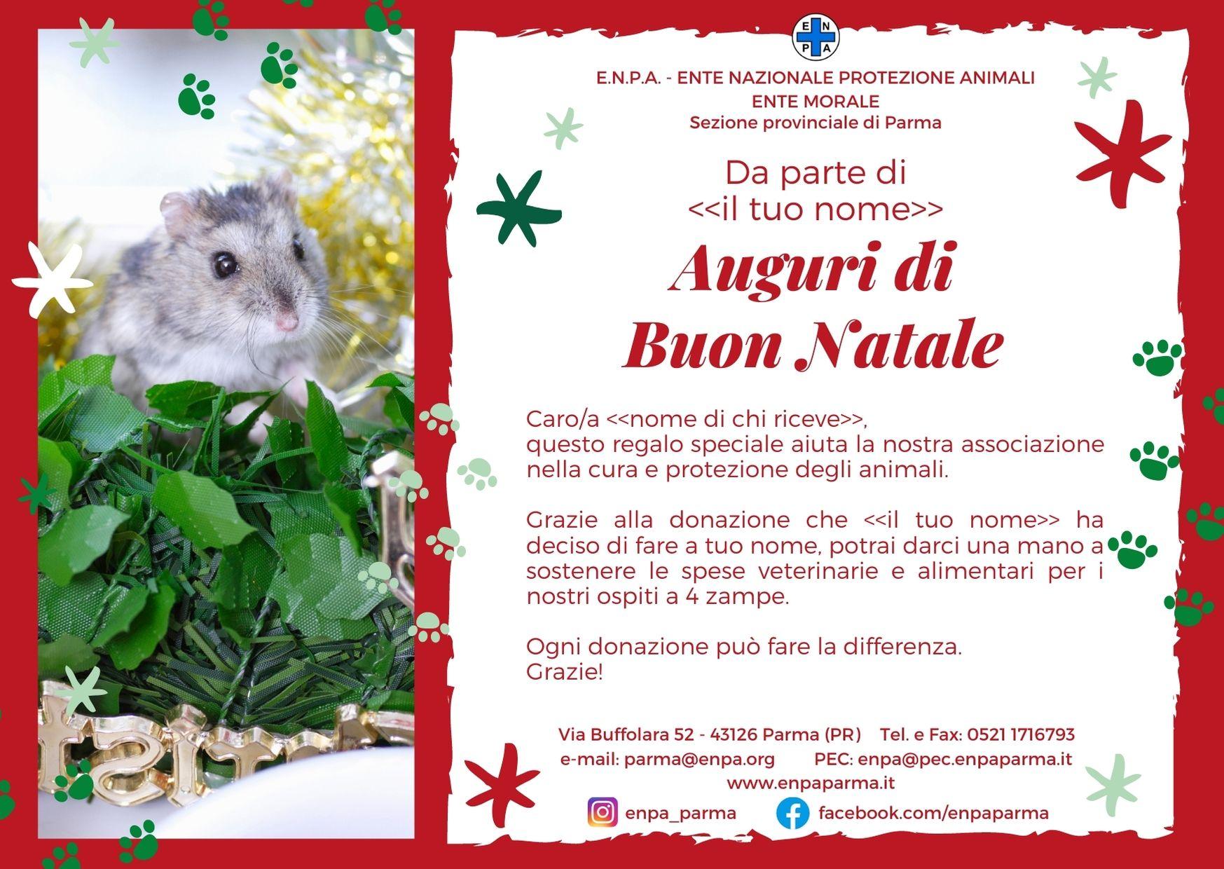 Natale Con ENPA (criceto - 5€)