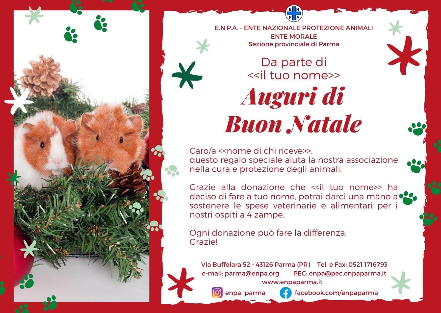 Natale Con ENPA (cavie - 5€)